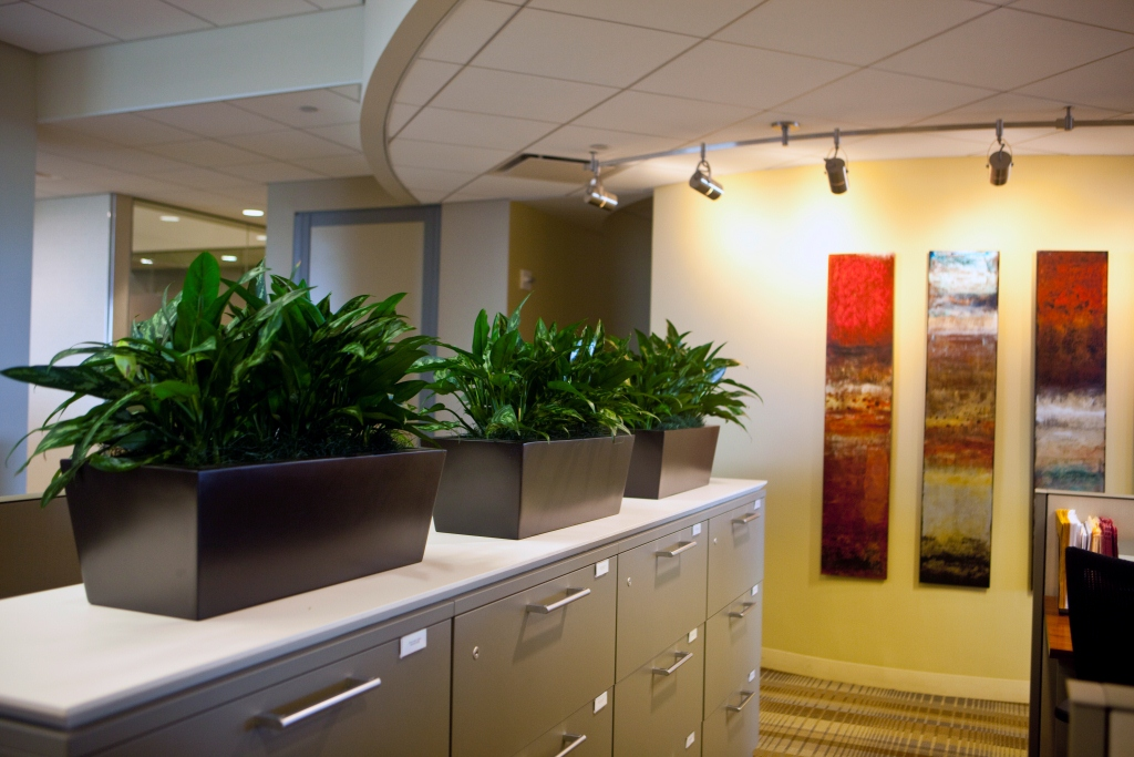 How Adding Natural Elements To Your Office or Business Can Benefit Your Health