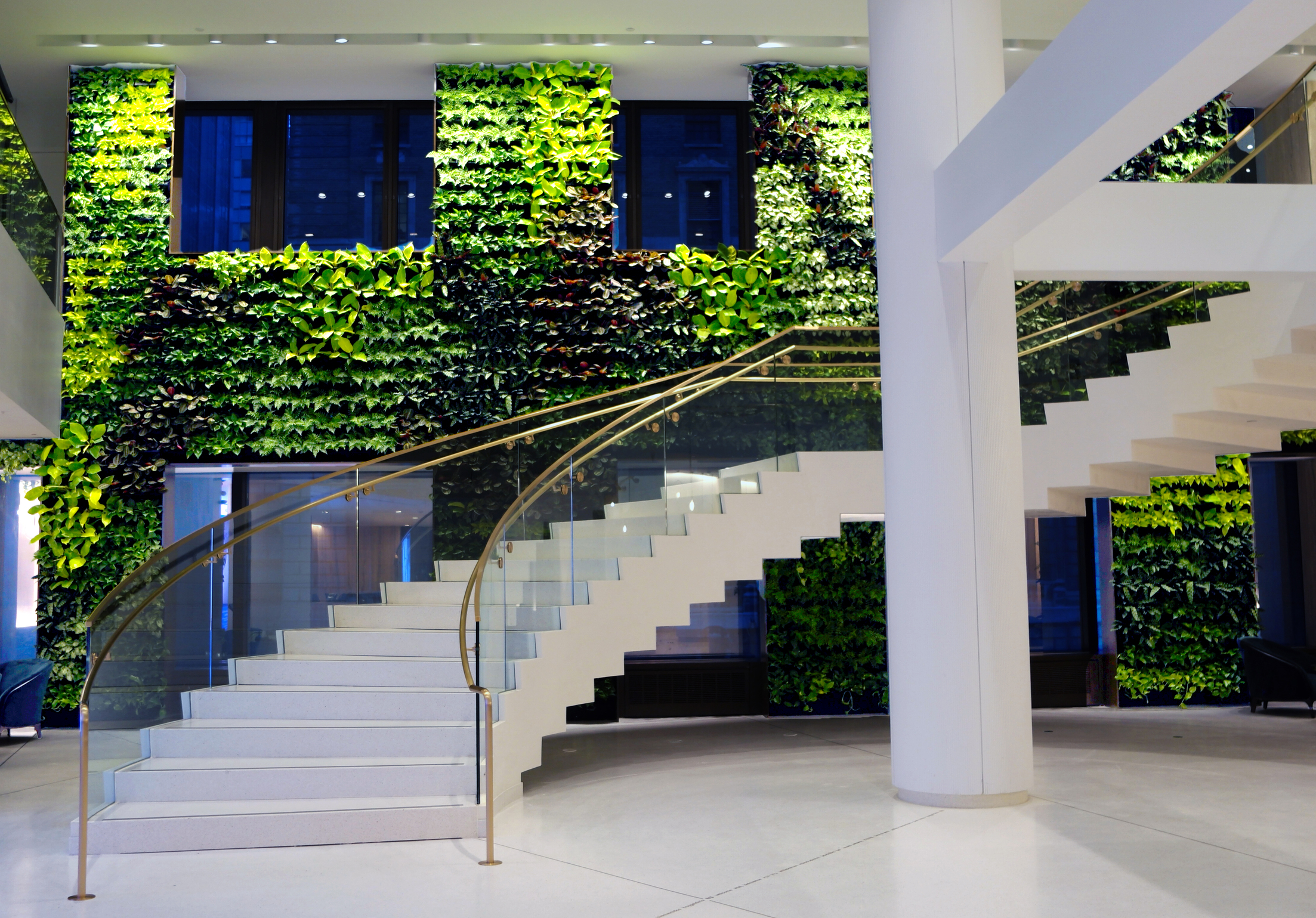 Living Walls: Why Go Vertical and How to Make it Work in Your Space