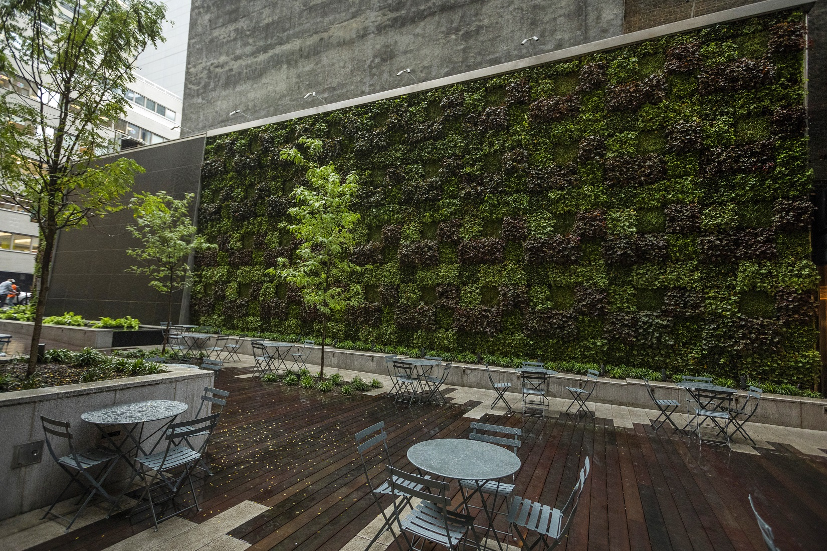 The Value of Outdoor Living Walls