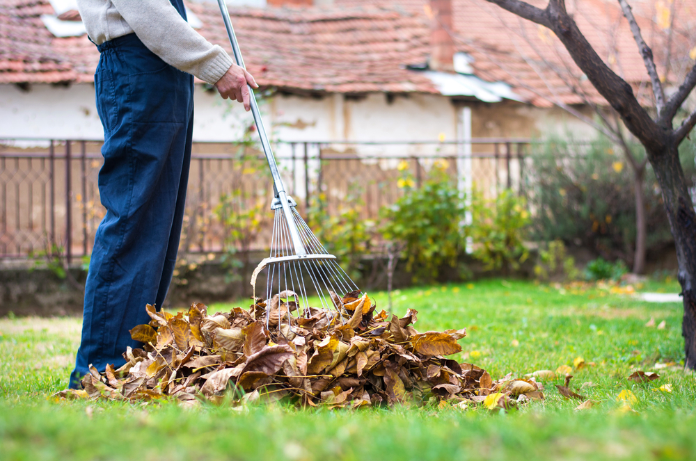 JMDL Provides a Fall Landscaping Checklist