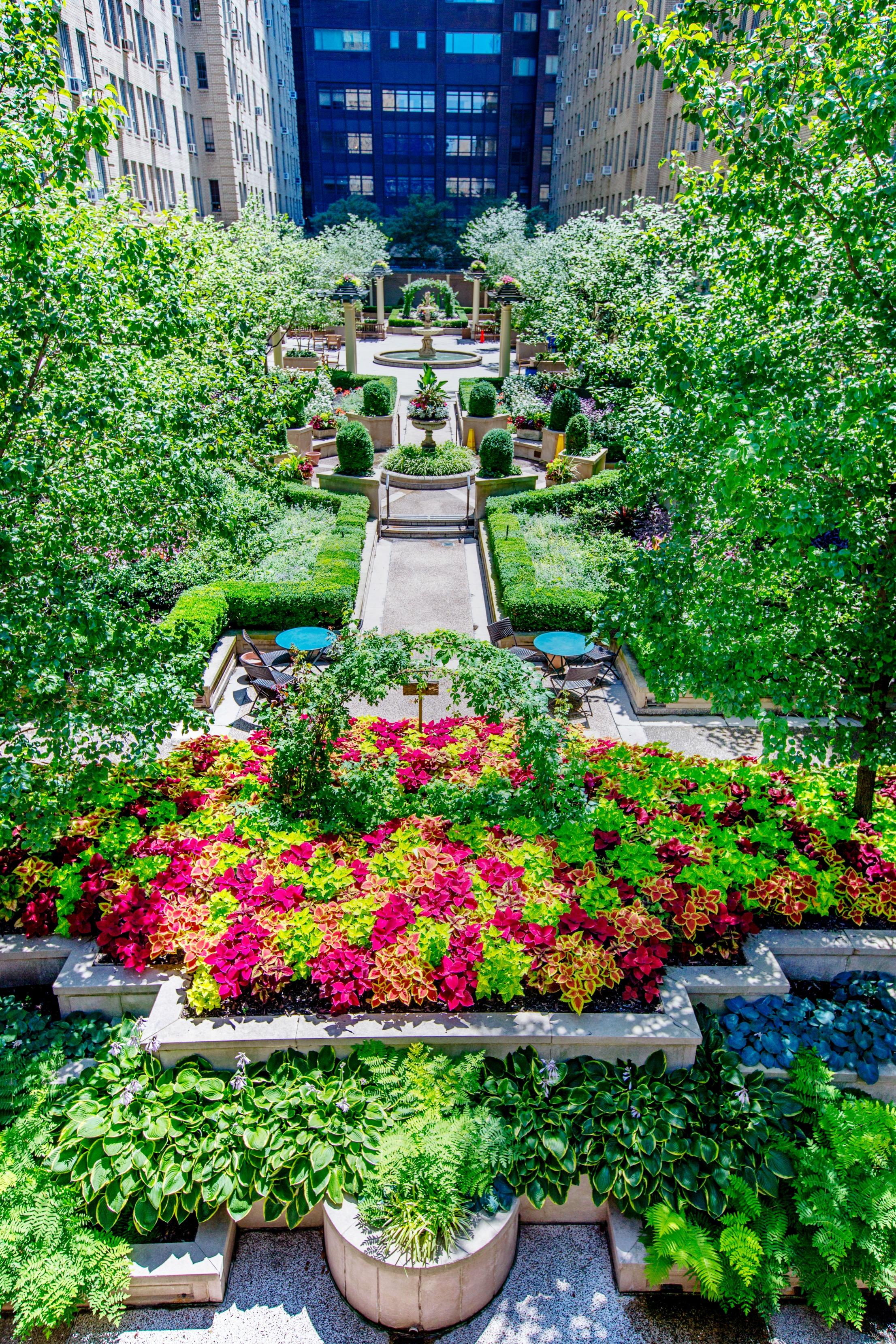 NYC garden landscape
