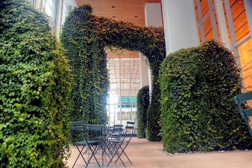 Indoor Garden Wall Discover interior living walls indoor living wall projects workwithnaturefo