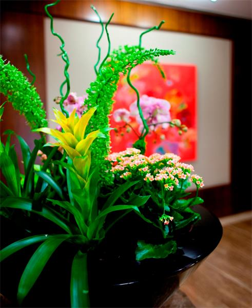 Seasonal Design - Indoor Landscaping - John Mini