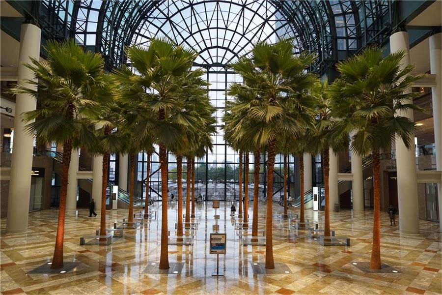 Winter Garden Brookfield Place Interior Indoor Landscaping John Mini