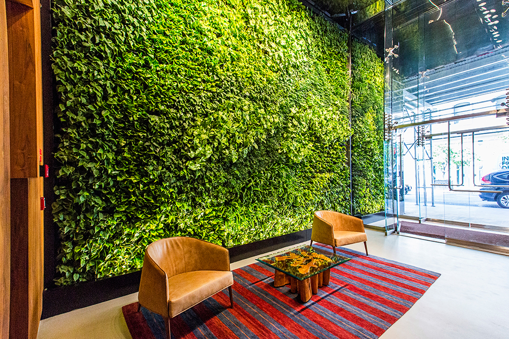 Downtown Living Wall