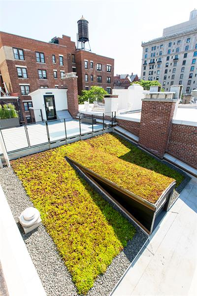 Sustainable from Roof to Ground