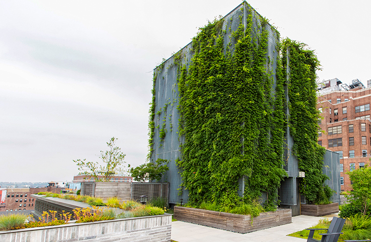Sustainable Rooftop Exterior Living Wall John Mini