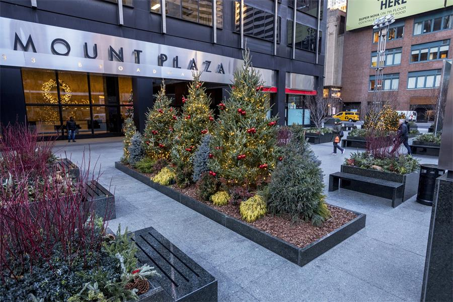 Outdoor Plaza Holiday Perfection