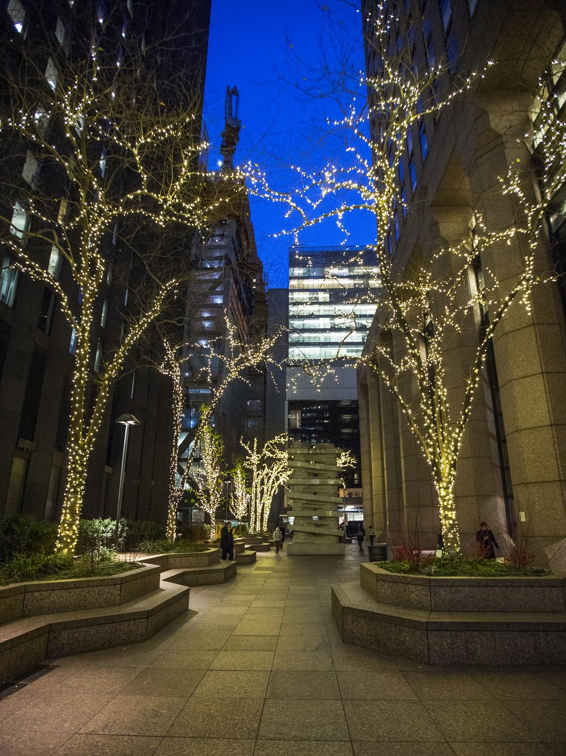 Plaza Holiday Lighting