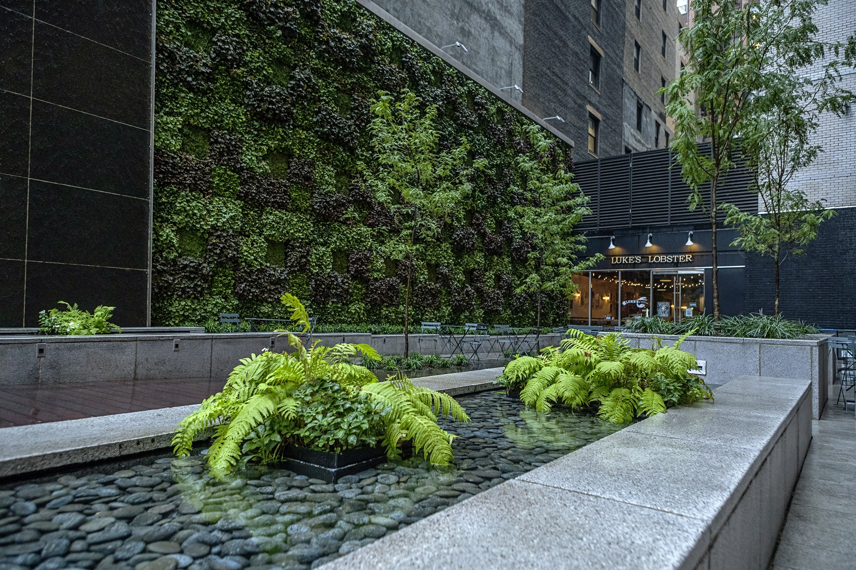 Pocket Park Living Wall
