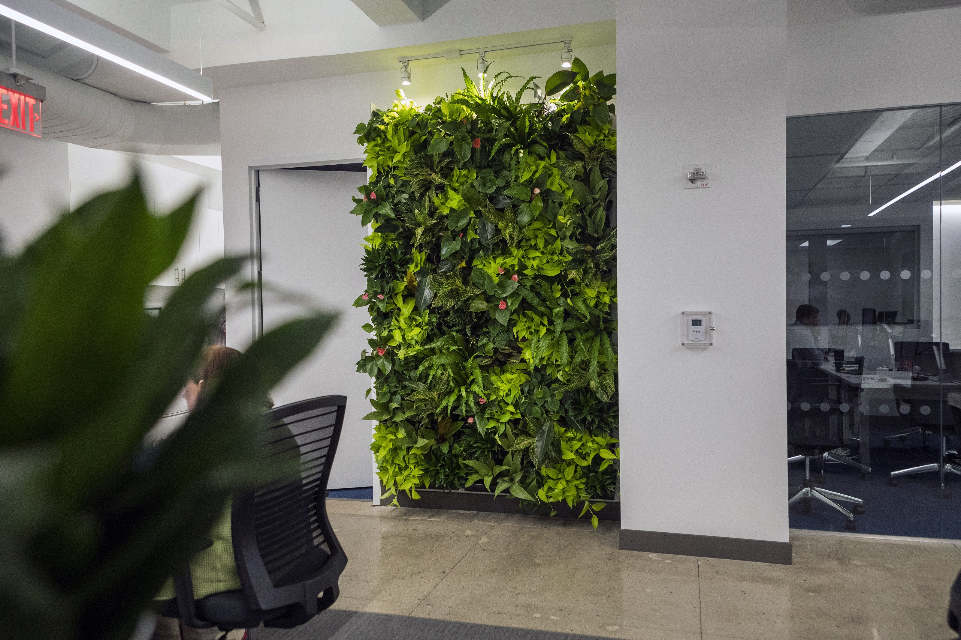 Our attention to detail in hand selecting each plant creates an eye-catching display in this office space.