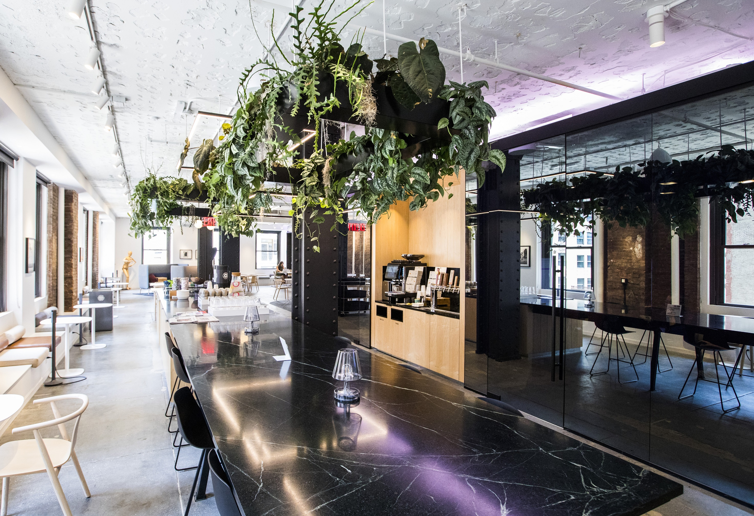 Suspended ceiling planters inspire fresh ideas in this collaborative environment.
