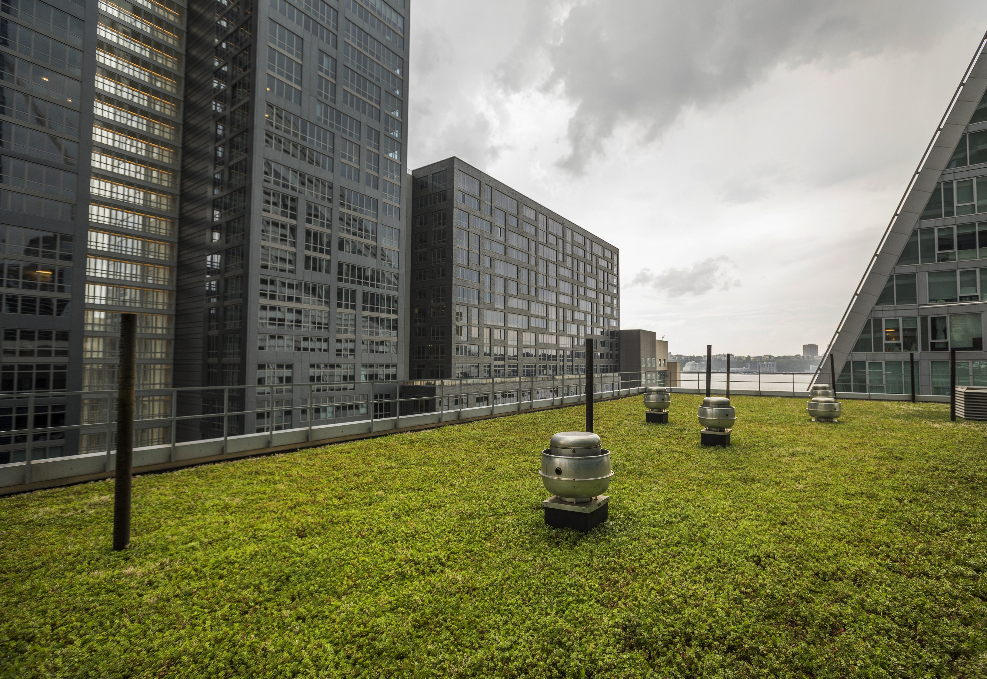 The minimalist green roof proves that a clean design can make a dramatic statement. The impact is in its' simplicity.
