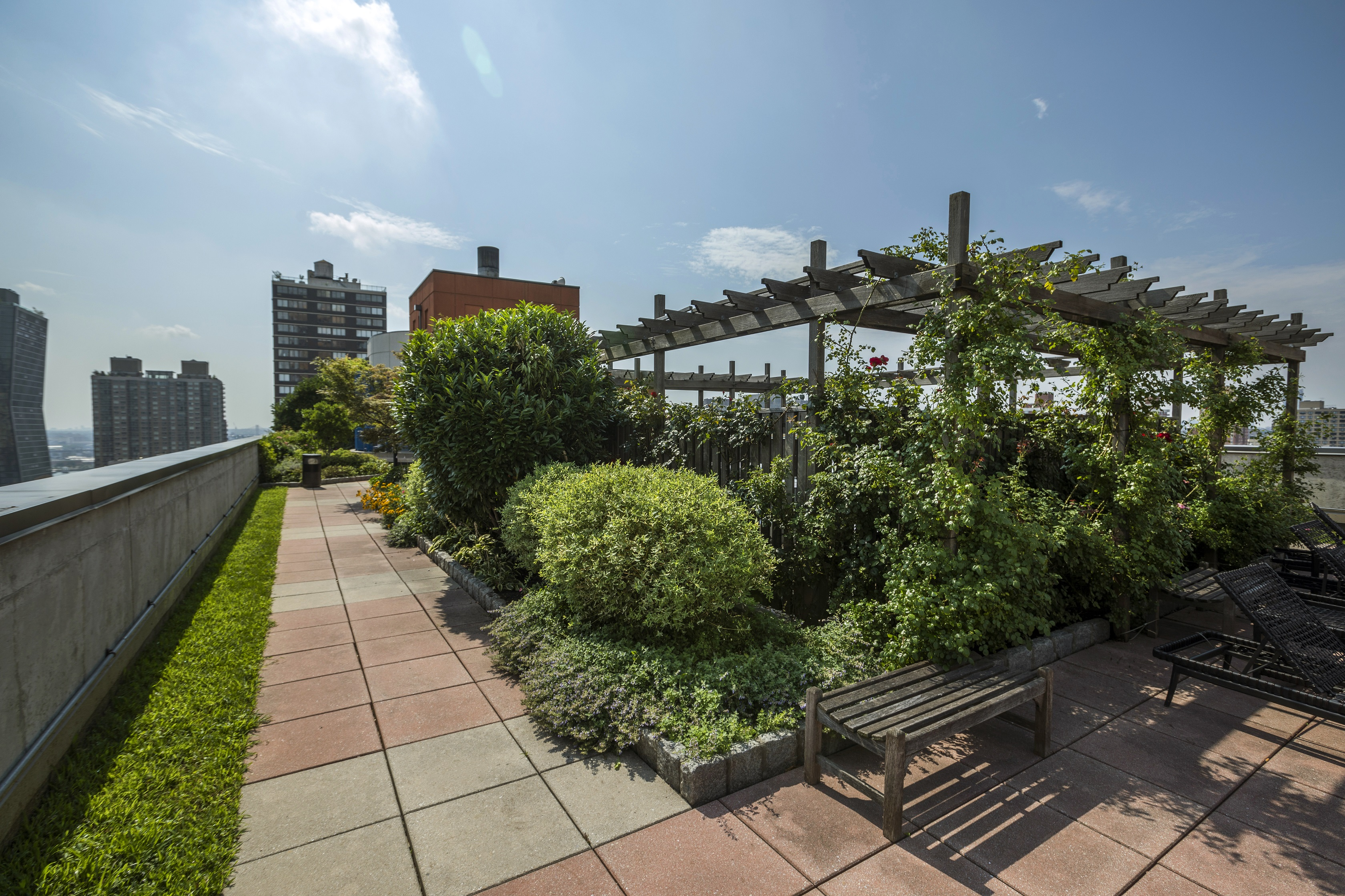 Get a bird's eye view as you wind your way through the path of this endless rooftop garden sanctuary.