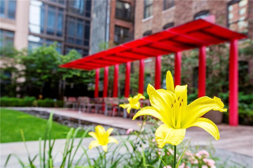 Chelsea Modern Zen Garden